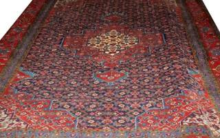 carpet No. 10